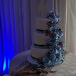 Wynand and Karin's Wedding at Rivier Plaas