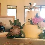 Emily and Nicholas's Wedding cake at Bona Bona Game Lodge