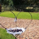 Dwaign and Inge Mari's Wedding at Benedetto On Vaal Venue